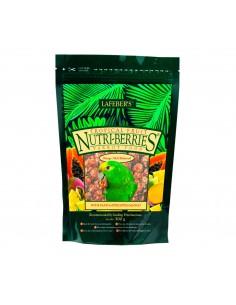 NUTRI-BERRIES FRUTAS TROPICALES PARA LOROS - TAMAÑO: 300 GR
