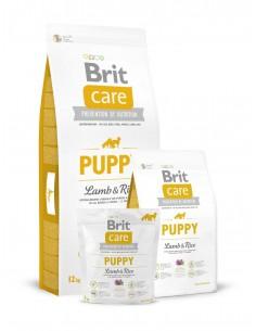 BRIT CARE PUPPY LAMB & RICE - TAMAÑO: 1 KG