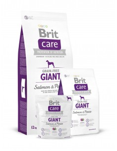 BRIT CARE GRAIN-FREE GIANT SALMON & POTATO - TAMAÑO: 1 KG