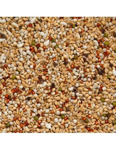 BEYERS SUPER DIETA - Tamaño: 25 Kg
