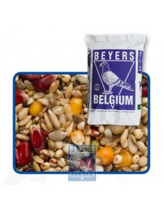 BEYERS PREMIUM MEZCLA DE ENZYMAS POWER