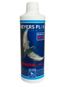 BEYERS PLUS MINERAL PLUS - TAMAÑO: 400 ML