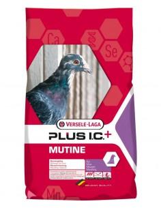 PLUS I.C. MUTINE MUDA VERSELE LAGA - 20 KG - TAMAÑO: 20 KG