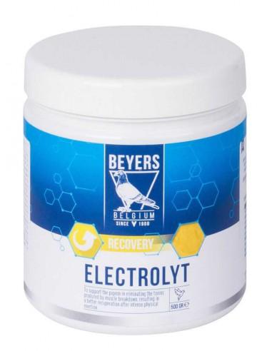 BEYERS ELECTROLYT - 500 GR - Tamaño: 500 gr