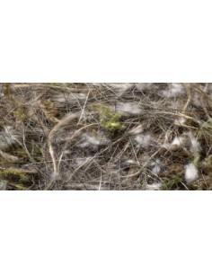 ANIMAL - VEGETAL - MUSGO SISAL FIBRE - Tamaño: 100 gr